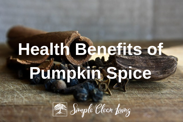 table covered with the seasonings that make pumpkin spice
