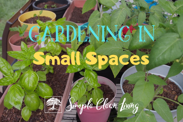 "Picture of herbs in containers with the blog post title ""Gardening in Small Spaces"""