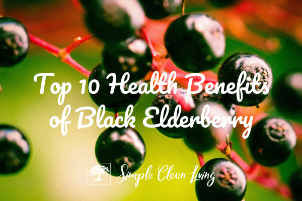 "Picture of elderberry on a branch with blog post title ""Top 10 Benefits of Black Elderberry"""