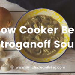 Picture of a bowl of beef stroganoff soup